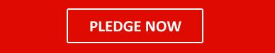 mts-pledge-now